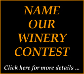 name our winery contest link for Washington Wine Company